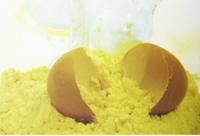 Сухой яичный белок (Альбумин), 100 гр