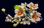 Цветочная ветка  Малая  розовая
