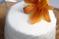 "Сахарная паста ""Satin Ice"" белая для обтяжки , 1 кг"