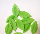 Листочки зеленые, 10 шт
