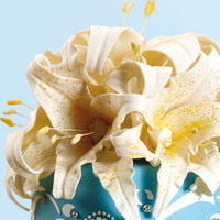 Паста цветочная ДАМА ТОП, 1 кг