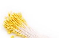 Махровые тычинки Lucia Craft (желтые), 10 шт