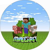 Вафельная картинка MineCraft , 20*20