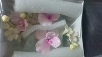 Цветочная ветка  Малая Нарцисс розовая с краплением