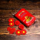 «ВИЗЬЕН» Мастика ,500 гр красная Турция