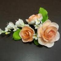 Цветочная ветка  Малая Роза персиковая
