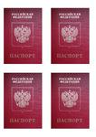 Картинка вафельная Паспорт малый 12,5х8,5, А4 .
